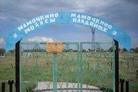 """""""Мамочкино кладбище"""""""